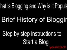 why blogging is popular